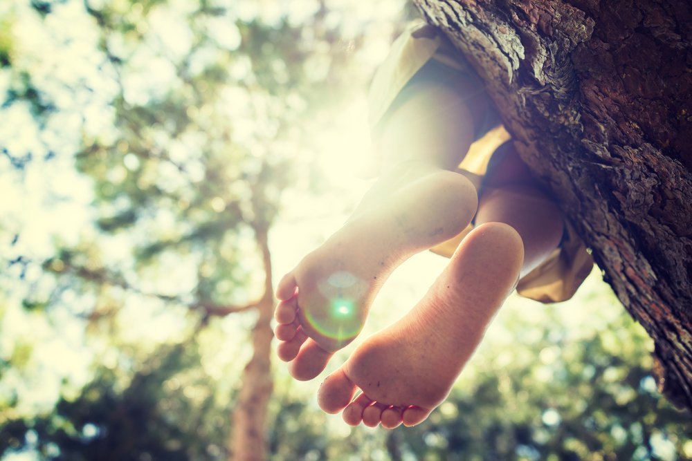 child's dangling feet while sitting on a tree